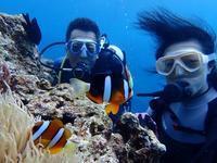 体験ダイビング☆ - 沖縄ダイビング&フィッシング DSA ブログ