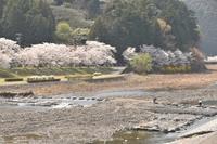 島田、大井川鐡道の家山の旅 - 僕の足跡
