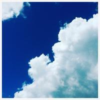 "p914 "" 台風一過 "" 都築・センター北 2018年7月29日 - 侘び寂び"