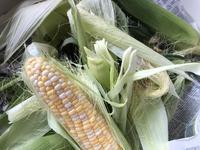 Local Corn (地元産のコーン) - ファルマウスミー