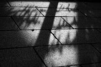 暑い日差し - モノクロ備忘録