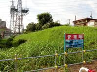 たての緑地(武蔵野鉄道引き込み線跡)を歩く - 黄色い電車に乗せて…
