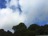 台風の被害なく - 千葉県いすみ環境と文化のさとセンター