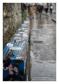 寂しい雨 - ♉ mototaurus photography