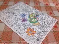 ☆アートセラピー・色鉛筆好き☆ - ガジャのねーさんの  空をみあげて☆ Hazle cucu ☆