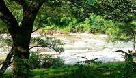 犀川、干上がる - 金沢犀川温泉 川端の湯宿「滝亭」BLOG