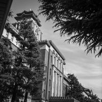 暑さに耐える名古屋市役所 - Silver Oblivion