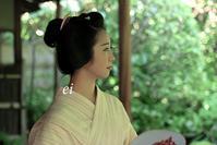 舞妓千賀遥・桂春院の夏-2 - ちょっとそこまで