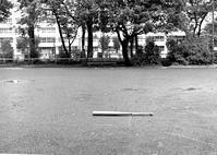 雨上がりの金属バットと前任校付属高校の甲子園出場 - 照片画廊