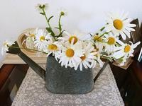 白い花と道具小屋のビフォーアフター - コテージ便り