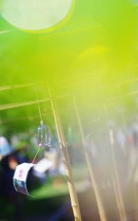 「小樽がらす市(ふうりん)」 - ainosatoブログ02
