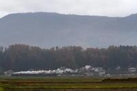 秋の山里を汽車が走った日 - 2016年・飯山線 - - ねこの撮った汽車