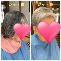 髪を切って猛暑を乗り切りませんか? - 三重県 訪問美容/医療用ウィッグ  訪問美容髪んぐのブログ