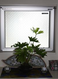 marimekko の包装紙と植物。 - シアワセ歳時記