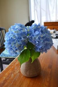 8/1~8/5まで札幌市民ギャラリーで平和美術展が行われます♡ - 札幌の四季、生活