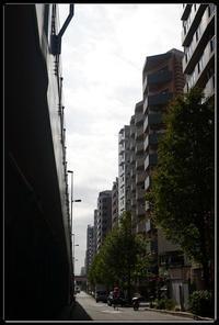 千住散歩 -751 - Camellia-shige Gallery 2