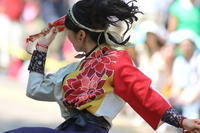 Street Dance音ら韻 - 花は桜木、