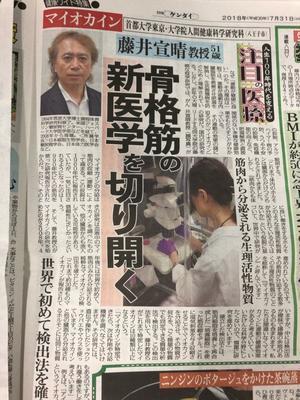 スクープ - 首都大学東京 運動分子生物学研究室 藤井・眞鍋グループ