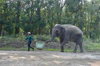 共同作業 - 動物園へ行こう