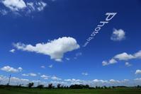イルカ雲 - ふわふわ天使