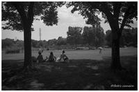 休日の公園 - BobのCamera