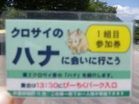 ハナさん52歳のお誕生日。2018.7.28 - クロサイ ブログ ~フウカの種~