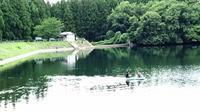 山形県ブラックバスリリース禁止から1年経過した - 「 ボ ♪ ボ ♪ 僕らは釣れない中年団 ♪ 」