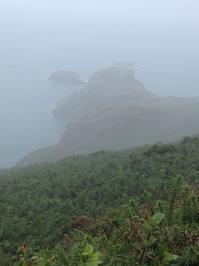 ワイルドキャンプ2日目。友人の巡礼は続く - イギリス ウェールズの自然なくらし