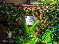恵比寿ガパオ食堂 - Darjeeling Days
