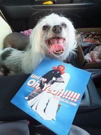 8月スタート! - 毎日笑顔♪ 裸犬☆温・真珠・絆愛Ⅱ