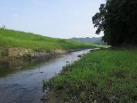 Ohechi route -2 Tonda-zaka /大辺路ー2富田坂超えの道 - 熊野古道 歩きませんか? / Let's walk Kumano Kodo