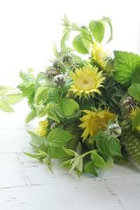 姿やさしきモネのひまわり - お花に囲まれて