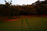 夕日を浴びて - enzo