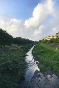 野川 - 写真を想う日日