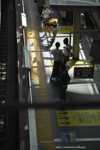 ホーム - Noriko's Photo  -light & shadow-