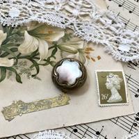●英国アンティーク マザーオブパールのボタン - 英国古物店 PISKEY VINTAGE/ピスキーヴィンテージのあれこれ