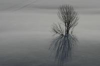冬の匂い - memory