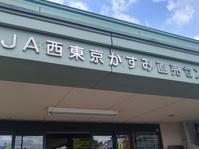 リンゴ梨 - 料理研究家ブログ行長万里  日本全国 美味しい話
