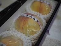 岡山の白桃 - 小さな幸せにっき