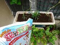 花と野菜の土 - NATURALLY