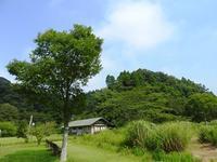 2018~盛夏~ - 千葉県いすみ環境と文化のさとセンター