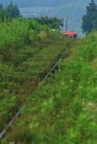 夏草の向こうから - ゆる鉄旅情