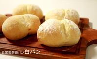 9月レッスンのご予約受付はじまりました。 - 自家製天然酵母パン教室Espoir3n(エスポワールサンエヌ)料理教室 お菓子教室 さいたま