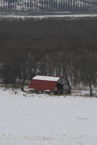 雪の牧場の向こうに白煙が見えた - 釧網線 - - ねこの撮った汽車