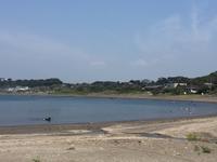 平日のエビカ浜 - 自然と遊楽