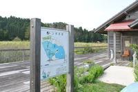 トンボ沼へ行ってきました! - 千葉県いすみ環境と文化のさとセンター