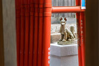 大学稲荷〜足立山妙見宮御祖神社〜 - ライカとボクと、時々、ニコン。