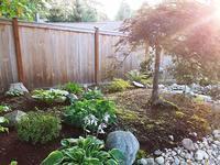 和風ガーデンのドラマチックな植物 - コテージ便り