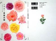 新刊本「ときめく薔薇図鑑」予約販売がスタート致しました。 - 元木はるみのバラとハーブのある暮らし・Salon de Roses