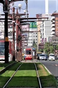 藤田八束の路面電車写真@鹿児島市内を走る路面電車は可愛い、線路の芝生が綺麗・・・西郷どん - 藤田八束の日記